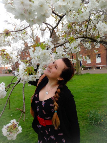 Cherry Blossoms at Norwich Cathedral