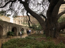 The Alamo grounds