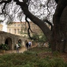 The Alamo grounds